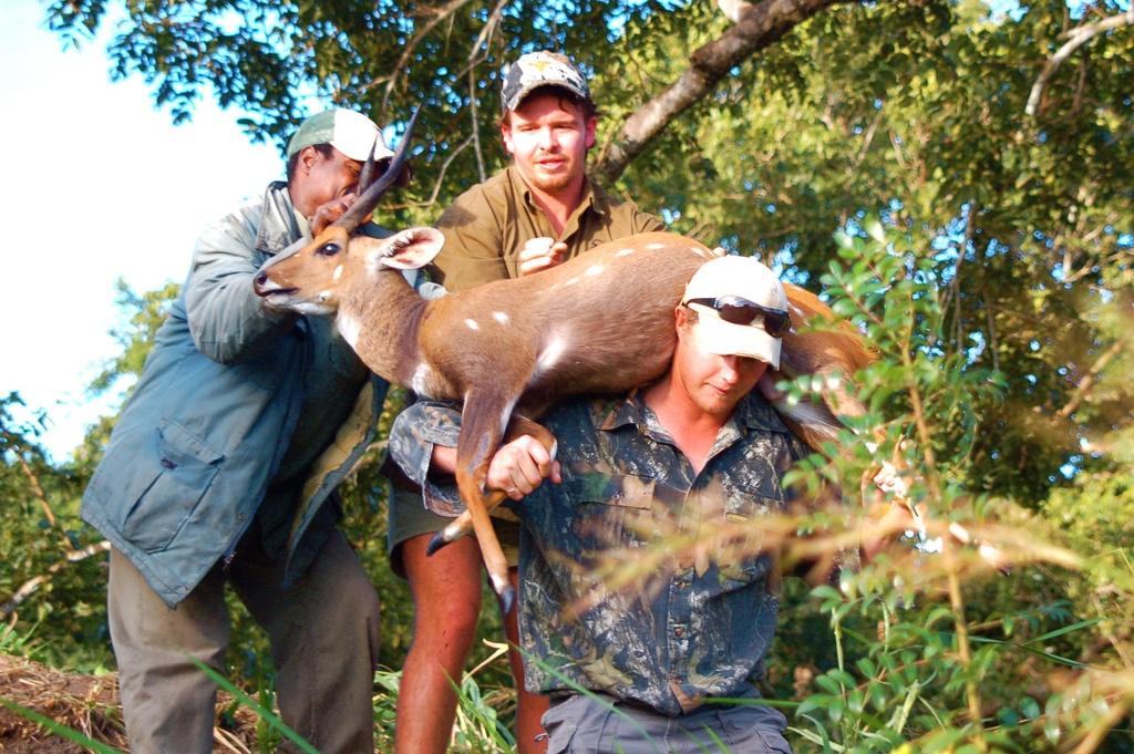 Hunting Safari Mozambique