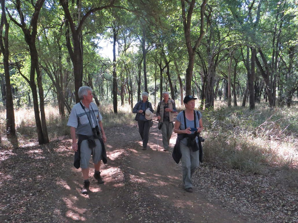 Guests Hiking at Mbuluzi Game Reserve