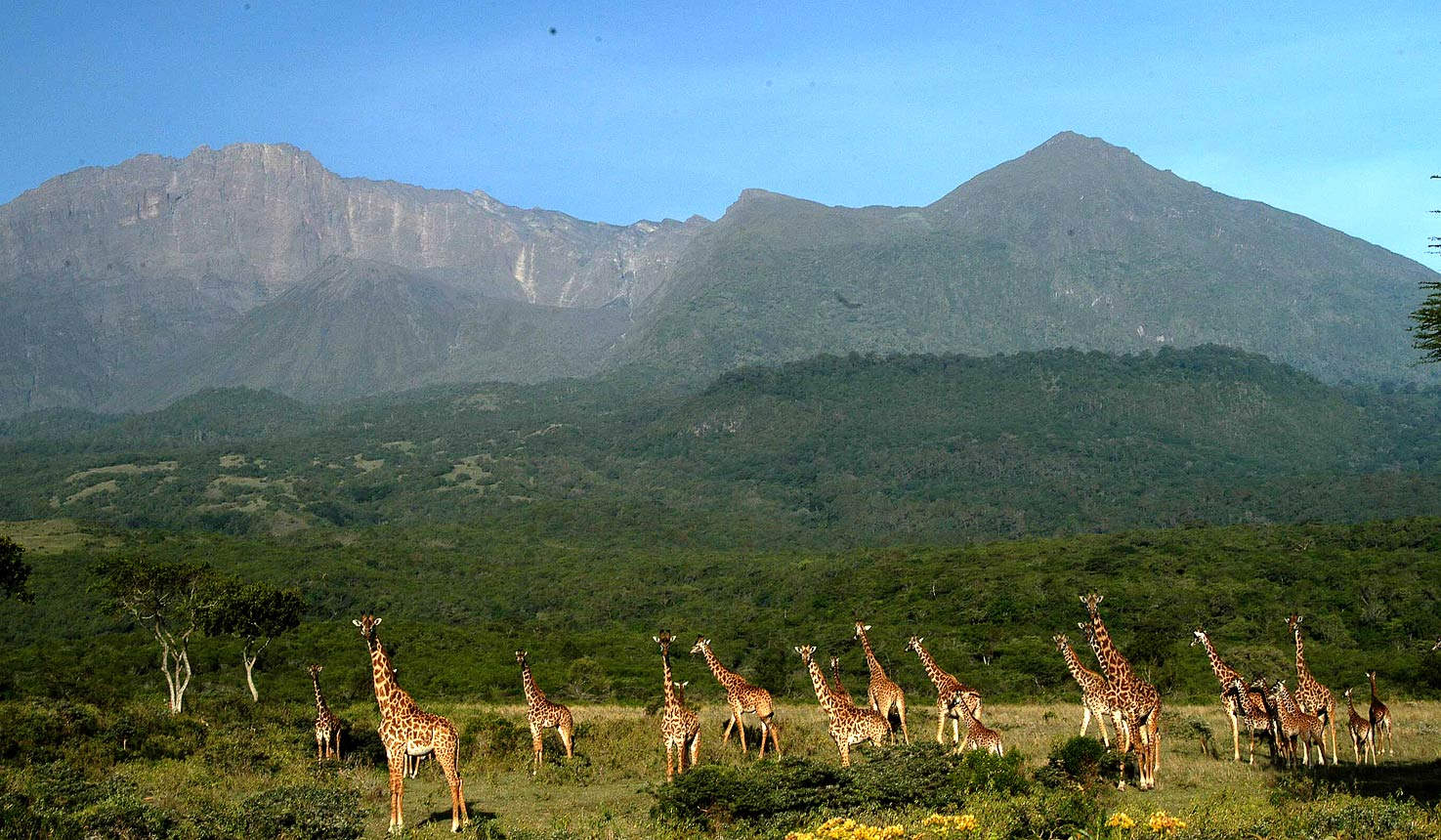 Mount Meru in Arusha National Park