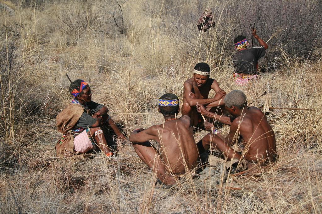south africa khoikhoi