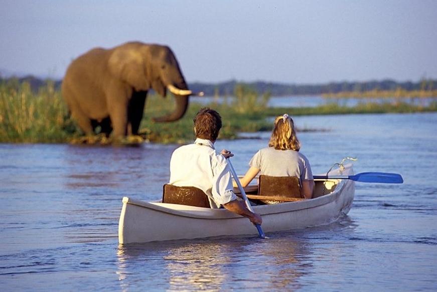 Canoeing in Lower Zambezi National Park