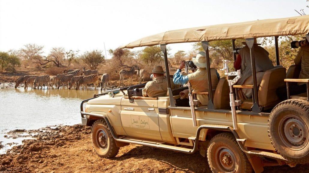 Madikwe Game Drive