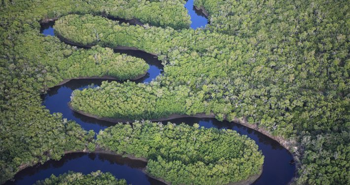The Zambezi River