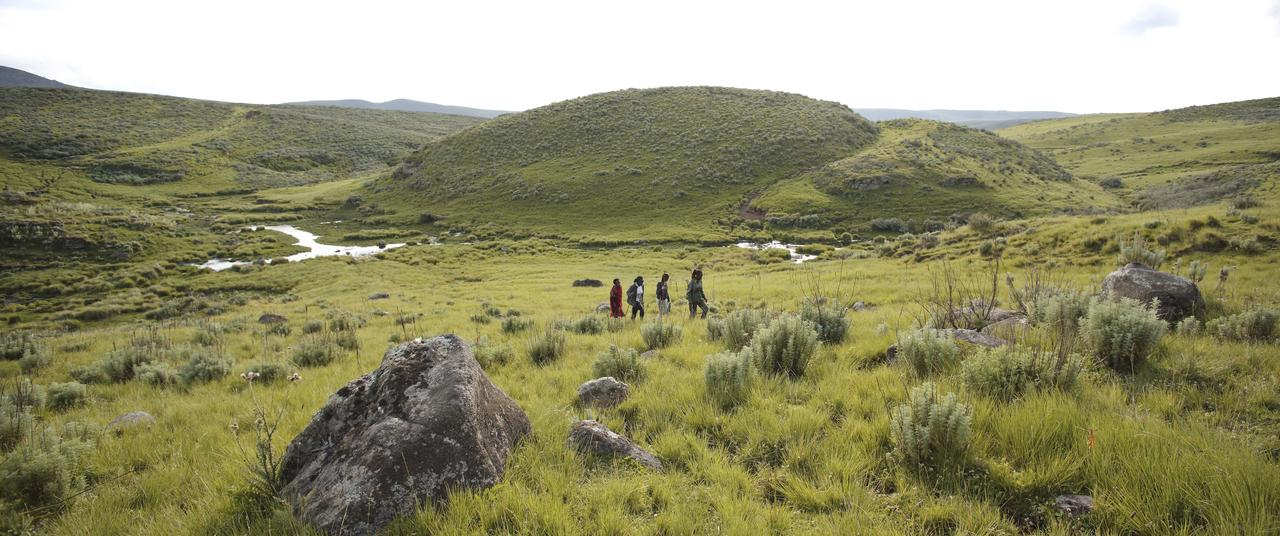 Walking in the highlands of the Ngrorngoro Conservation Area
