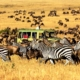 African Tours