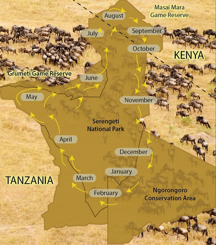 Serengeti National Parks
