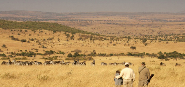 The dry season in the Masai Mara makes for an outstanding safari