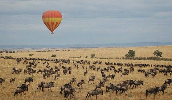 No safari in Kenya is complete without a hot air balloon safari