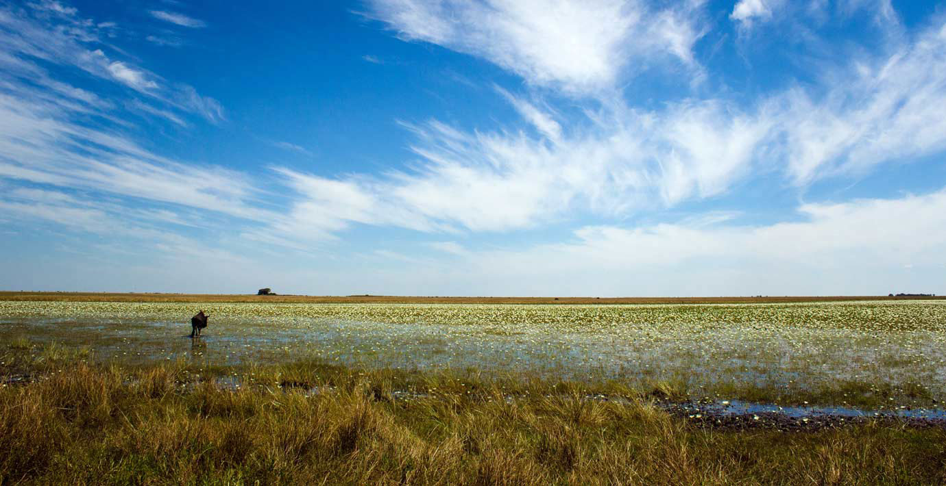 The vastness of the Liuwa Plains