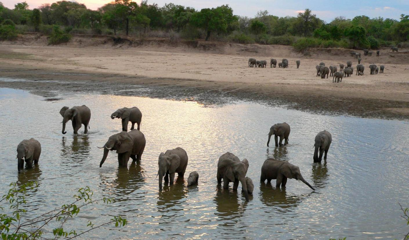 Iconic Zambia – South Luangwa