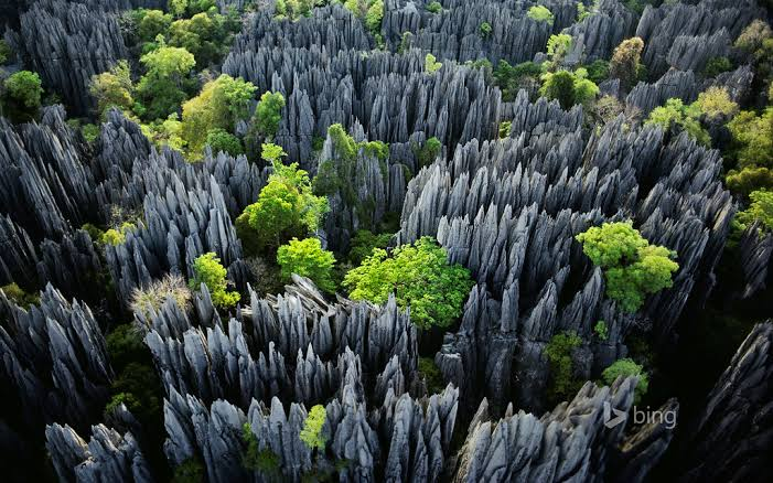 Rock formations to make the eyes water at Tsingy