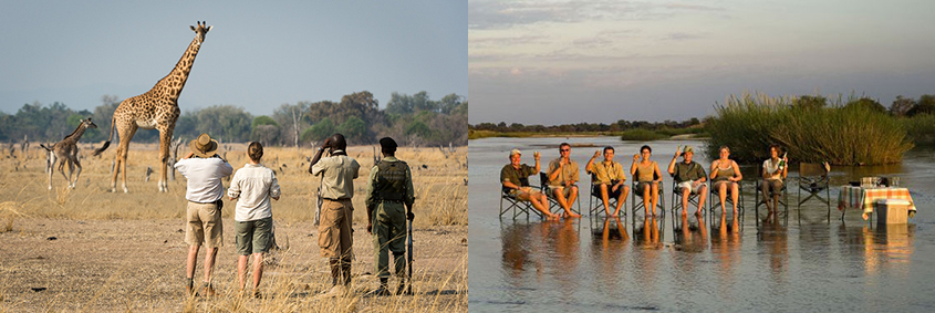 Walking safari in the South Luangwa